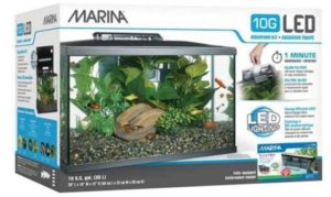 kit de acuario portada 300x179 - Tienda